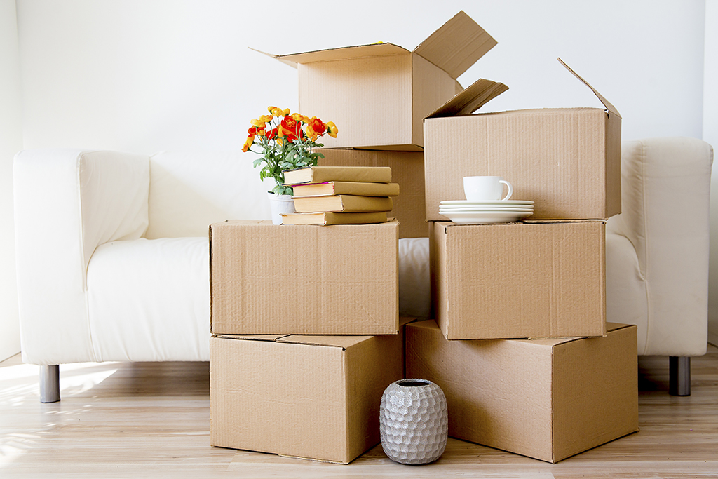 Are Moving Bins and Packing Supplies Better Than Cardboard Boxes? Find Out the Truth!